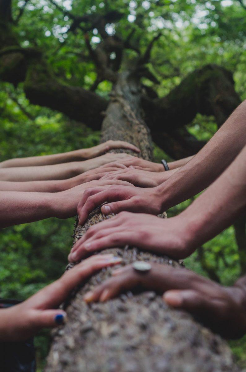 Hände von Team auf Baumstamm