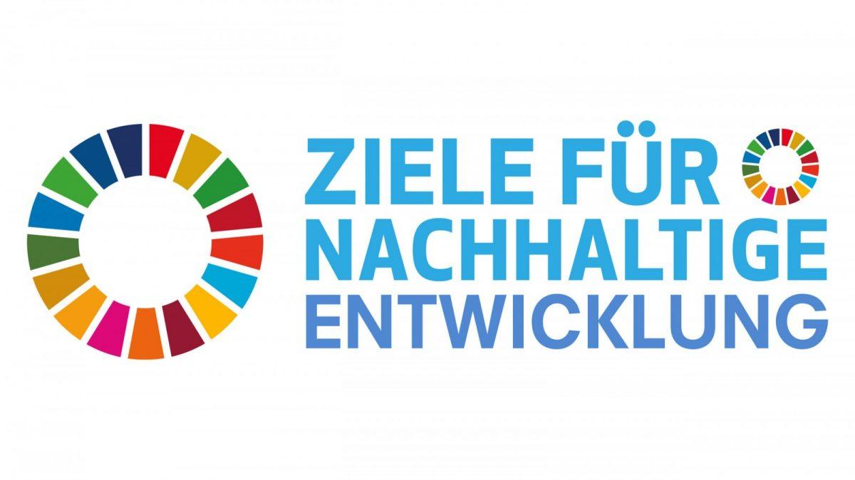 Logo SDG's