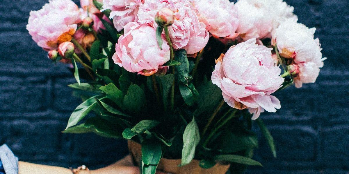 Frau hält Blumenstrauß mit Pfingstrosen in der Hand