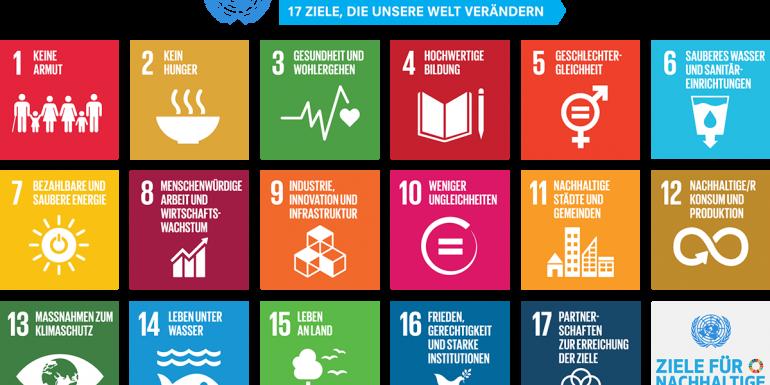 SDG cover